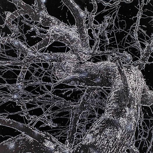 Windung, 2015, 250 x 170 cm, Mischtechnik auf Leinwand