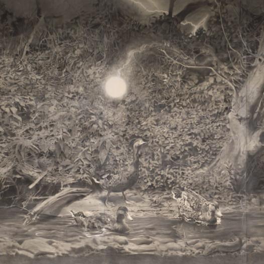 Enten Kugelblitz, 2011, 265 x 415 cm, Kreide/Kohle auf Papier
