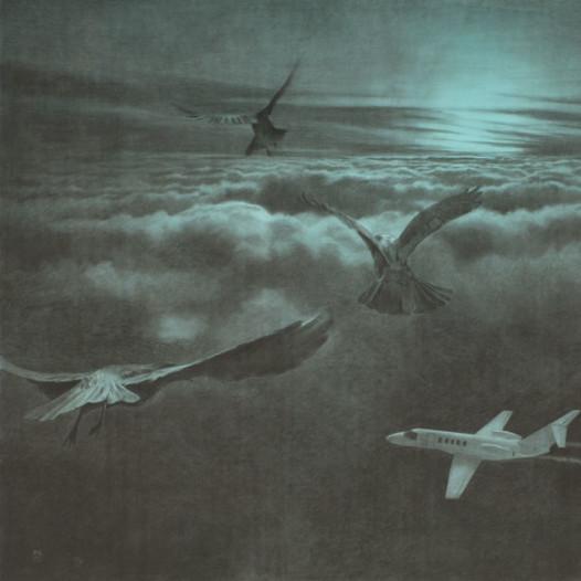 Vögel über Wolken, 2012, 135 x 187 cm, Kreide/Kohle auf Papier