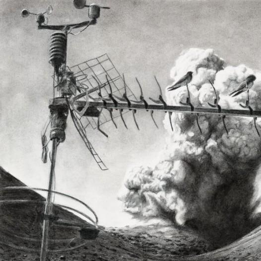 o.T. (Schwalben), 2014, 63 x 93 cm, Kohle auf Papier