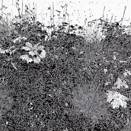 Wiese, 2013, Linolschnitt, 120 x 170 cm
