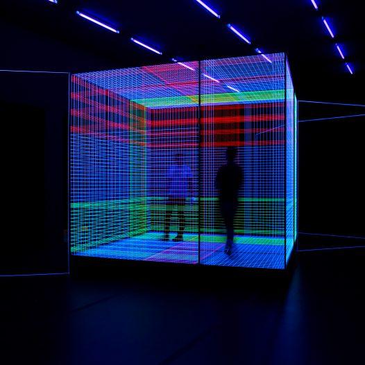 Birdcage_Illusion, 2018, Rauminstallation, Fäden/UV-Licht, 897 x 362 cm