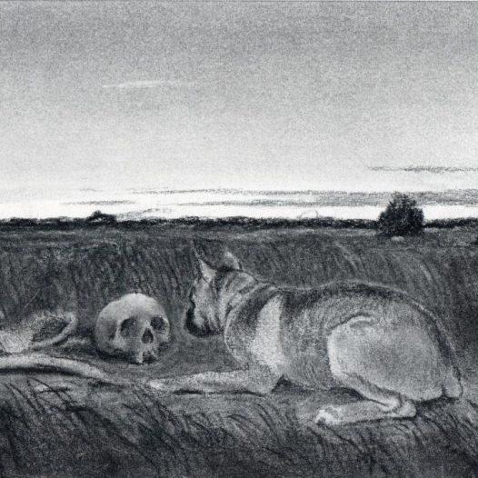 O.T. (Hund und Schädel), 2018, Kohle auf Papier, 14,5 x 21 cm