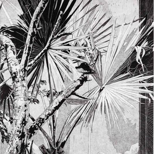 Kookaburra, 2018, Linolschnitt Reduktion (6 Farben), Druck: 55 x 41,2 cm, Papier: 69 x 53 cm, Auflage 12