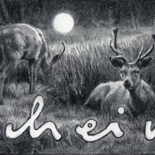 O.T. (Schein), 2019, Kohle auf Papier, 15 x 28,5 cm