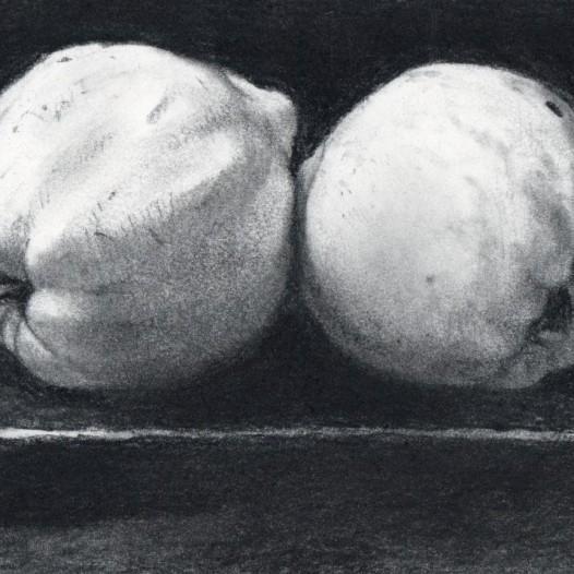 O.T. (zwei Quitten), 2018, Kohle auf Papier, 14,5 x 21 cm
