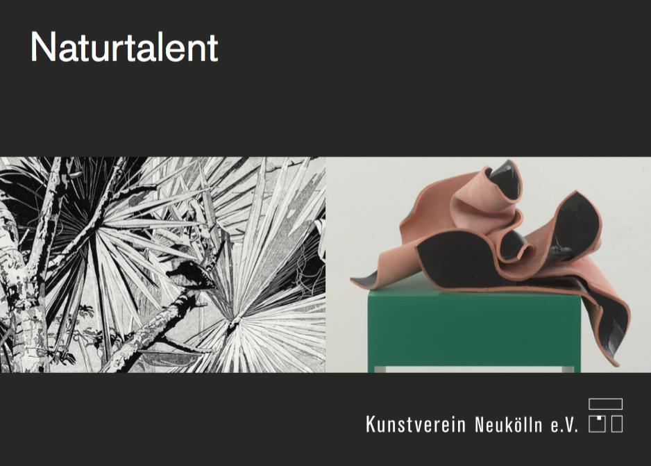 Naturtalent - Philipp Hennevogl Kunstverein Neukölln