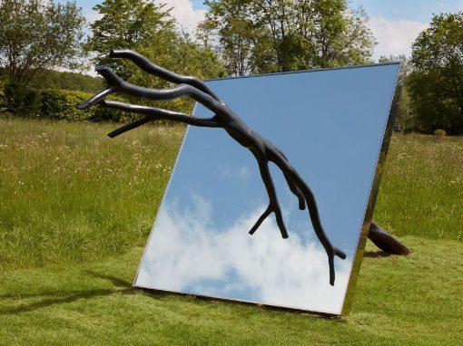 Birgitta Weimer: Reflecting Gaia