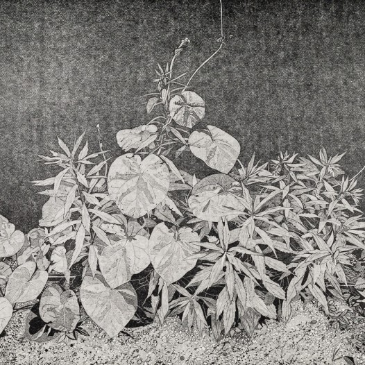 Oase, 2020, Linolschnitt, Reduktion, 6 Farben, Auflage: 12, Druck: 41,3 x 54,8 cm, Papier: 53 x 69 cm