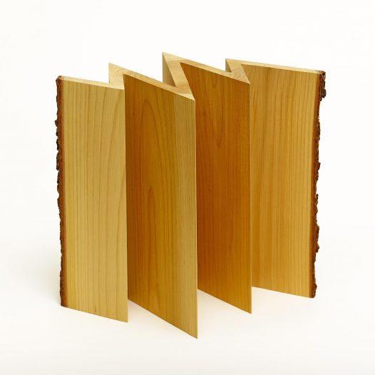 Baumalmanach XIV, 2020, Zeder, 34 x 27,5 x 30 cm