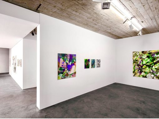 Tatiana Urban Ausstellung Phytopoetik